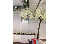 Silk white blossom tree