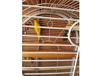 Birds and cage kakariki x2