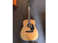 Harmony Sovereing after general make-over £320 + epiphone dreadnought case £40