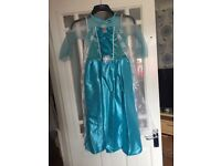 Frozen elsa and Anna dresses 8-9years