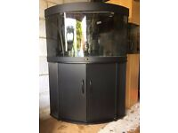 Juwel Trigon 190 Curved Corner Aquarium and Cabinet in Black