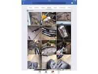 Xj 900 parts for sale