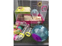 Large Hampstead cage and accesories