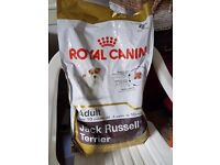 Food for Jack Russell Adult