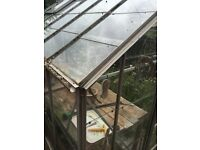 Large green house £50 ono