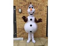 Brand new mascot costume