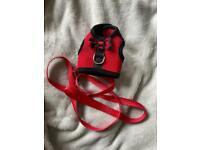 small puppy / kitten / rabbit / guinea pig harness