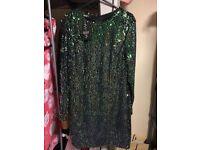 Brand New Sequin Dress