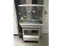 Vision birdcage and matching table for sale
