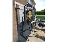 Punch bag stand with punch bag