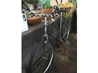 Vintage Apollo Commuter - Fixed Gear