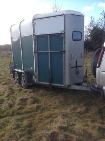 Ifor Williams 505 horse trailer