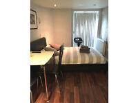 Superb En-suite room in Russell Square Bloomsbury