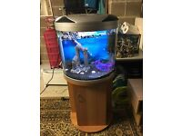 65l moon fish tank full set up with stand filter heater 2 x light blue and white sand ornament