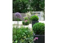 Landscaper in London