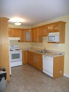 3 Bedroom House Near Avalon Mall - Washer, Dryer, Dishwasher