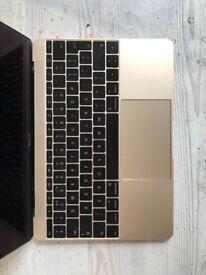 "(2015) Apple MacBook 12"" 256GB"