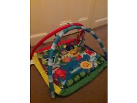 FOR SALE - £15, Baby Einstein Caterpillar and Friends Baby Gym, excellent condition - PICK UP ONLY