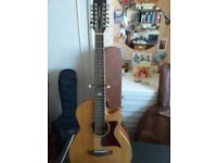 Tanglewood 12 string, TW145