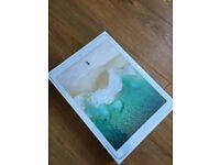 iPad Pro 12.9 Inch Wi-Fi 256GB - Gold new sealed