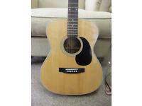 Blueridge BR-63 Acoustic Guitar
