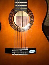 Valencia Guitar 3/4