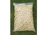 10kg bag of pineapple Boilies 18mm
