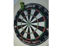 Darts practice partner
