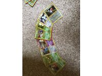 Large mint condition Pokemon Card collection for sale