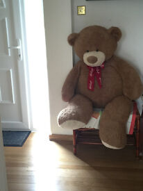 Human Size Teddy Bare Originally From Hamleys In London