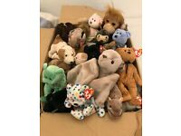 TY Beanie Babies - Perfect Toys for Christmas!