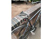 Stolen Trek Bike- Do not buy this bike