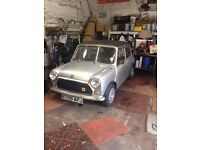 Classic Mini FOR SALE