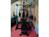 Nautilus Smith Machine and Bench Plus 100+kg Weight Plates