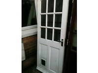 Exterior hardwood door with frosted squares and cat flap