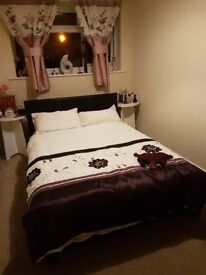 Cheapest double rooms to rent 350£