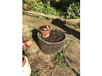 2 Barrel Garden pots