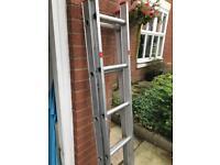 Duraflex Double 12 tread extension ladder