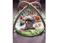 Skip Hop Treetop Friends Activity Gym - play mat