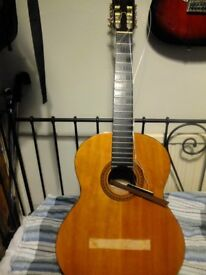 Tanglewood tsc-51 Spanish Guitar in need of a fix