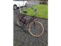 Raleigh vintage cameo bike