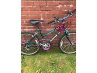 X 2 girls bikes