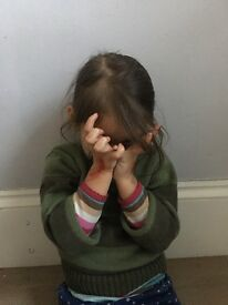 Mandarin speaking nanny needed in Islington