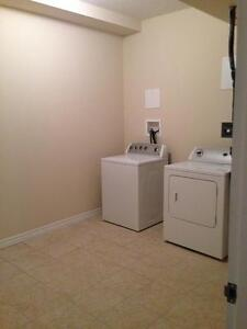 Luxury 1+Den - 1241 Sq.Ft!  In-suite laundry, 9 ft. ceilings Kitchener / Waterloo Kitchener Area image 14