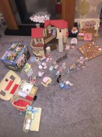 Huge Sylvanian Set .. £99 for the lot .. over £200's worth