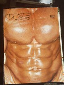 Various Vice Magazines