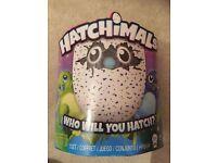 Hatchimal kids toy BNIB