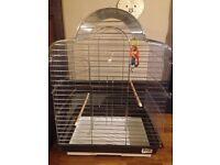 Large chrome bird cage