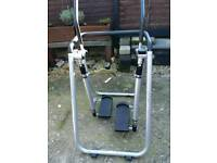 1 Carl Lewis cross trainer and 1 Carl Lewis stepper