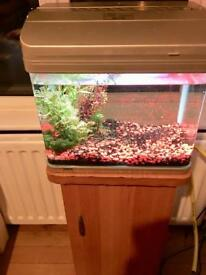 22ltr curved tank with Eheim filter and free stand